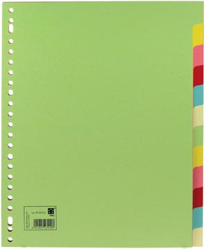 Scheidingsbladen met 12 tabs in A4 maxi