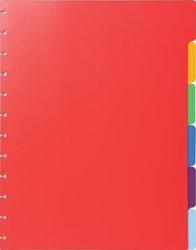 Exacompta uitneembare tabbladen voor showalbum met ringen, in gekleurd PP, 6 tabs