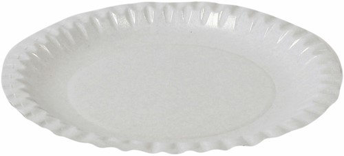 Bord biologisch afbreekbaar karton 220mm wit 100 stuks