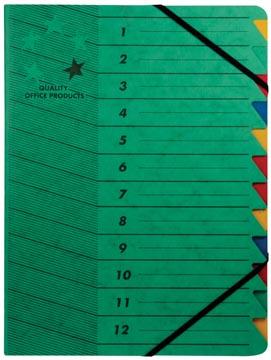 5star sorteermap karton 12 vakken groen