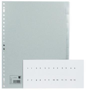 Numerieke Tabbladen A4 met verwisselbare etiketten van 1-10 tabs