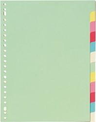 Tabbladen A4 met 12 tabs in geassorteerde kleuren