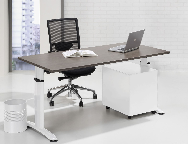 bureau voor kantoor. Black Bedroom Furniture Sets. Home Design Ideas