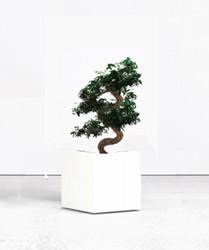 Kunst bonsai met plantenbak vierkant