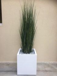 Siergras hoog met plantenbak vierkant