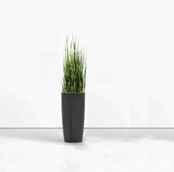 Siergras hoog met plantenbak rond 70cm