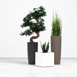 Siergras hoog met plantenbak rond 90cm