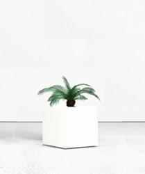 Kunstpalm met viekante plantenbak